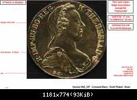 SF - Vienna - H62 GP - Crossed Bars - Gold Plated - Bust LR